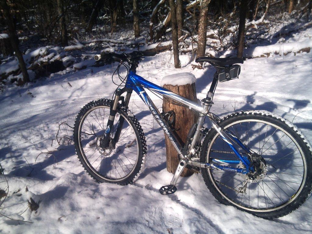 Durham Forest Conditions-2013-02-04-13.21.34.jpg
