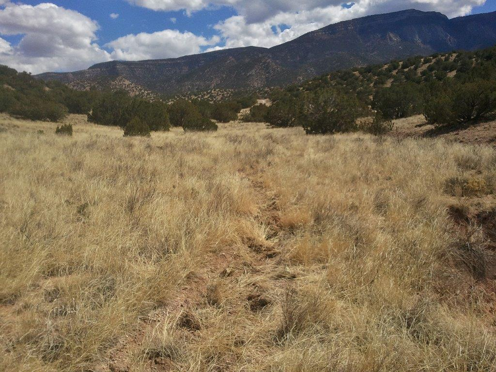 Placitas Trail Work-2013-03-31-14.02.27.jpg