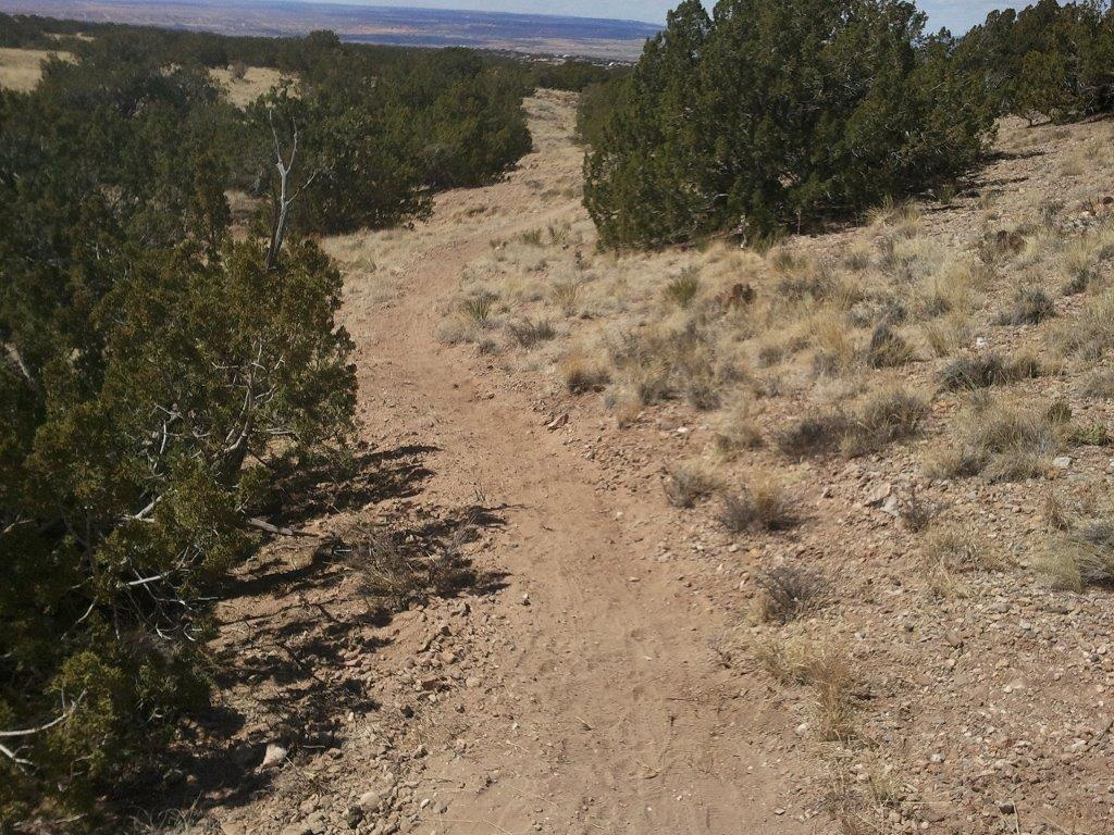 Placitas Trail Work-2013-03-31-14.06.22.jpg