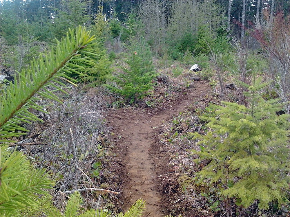 "How many years have you been building ""Flow country Trails""?-2013-04-05-13.51.14.jpg"