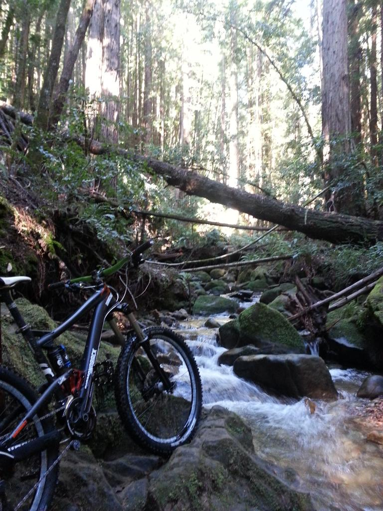 What did You do today on your mountain bike?-20130104_124515.jpg