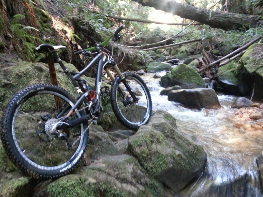 What did You do today on your mountain bike?-20130104_124541.jpg