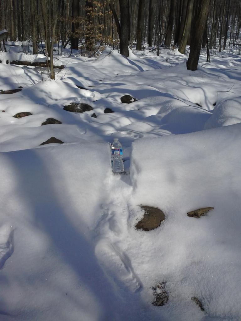 Pennsylvania...Post your Snow Trail Updates-20130108_113314.jpg