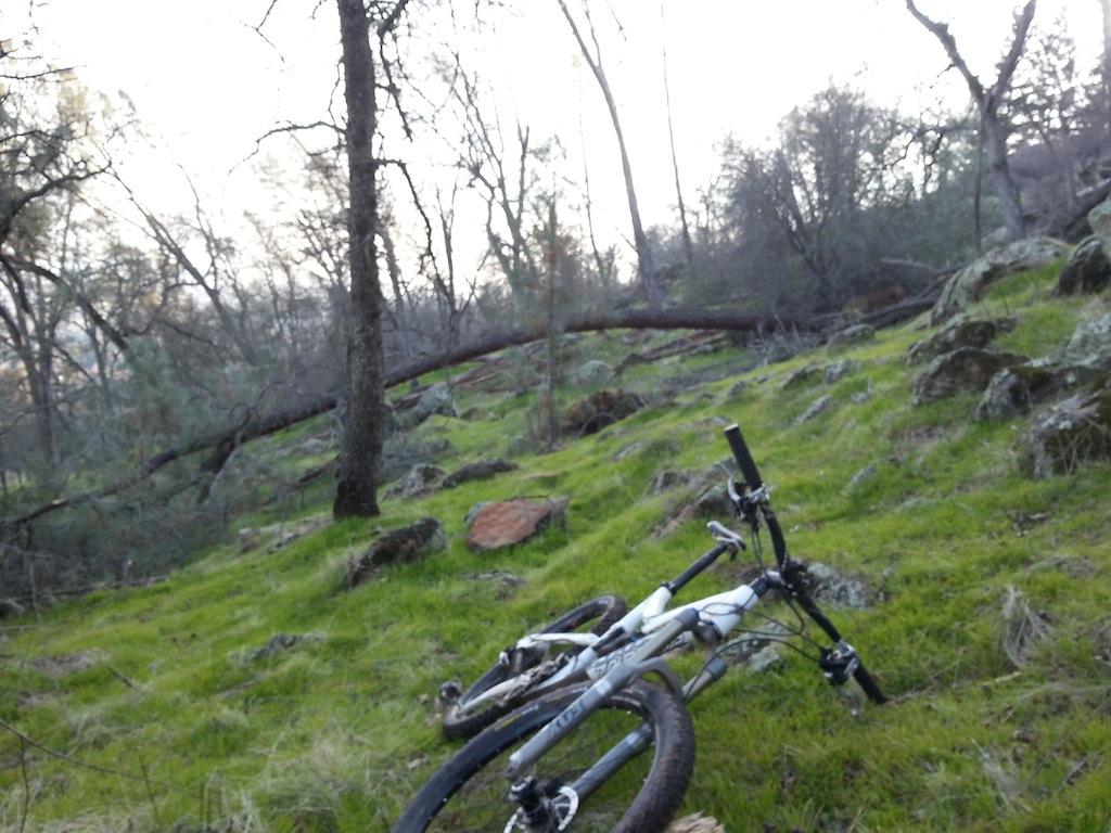 Trail Building in Eldo Hills-20130115_155115.jpg