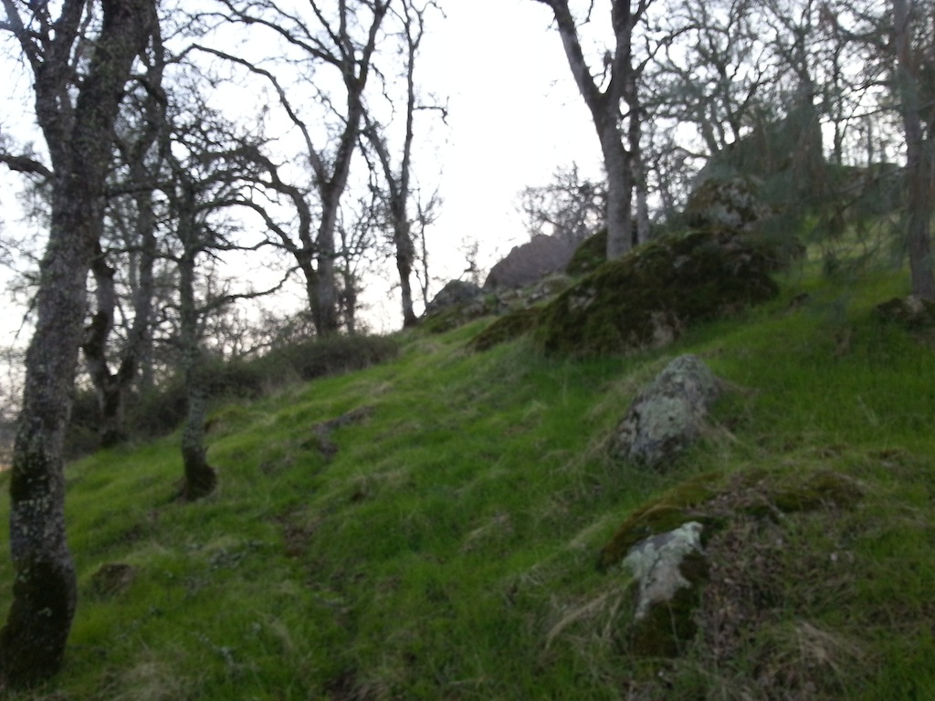 Trail Building in Eldo Hills-20130115_160847.jpg
