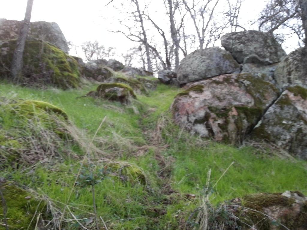 Trail Building in Eldo Hills-20130115_163224.jpg