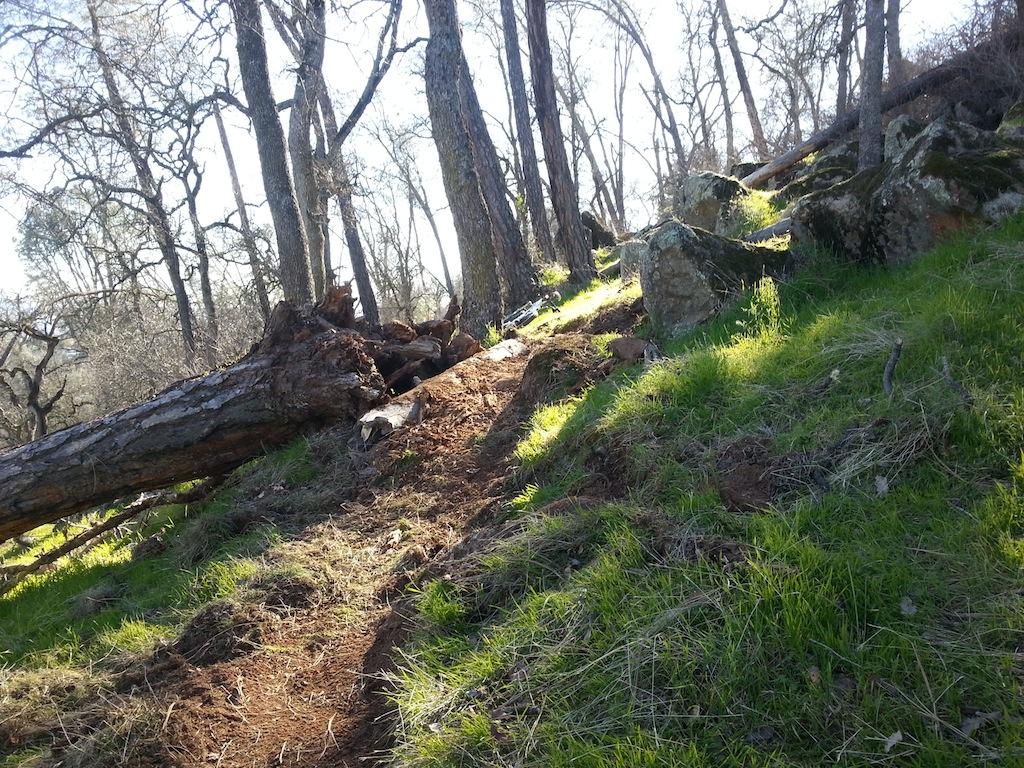 Trail Building in Eldo Hills-20130120_134809.jpg