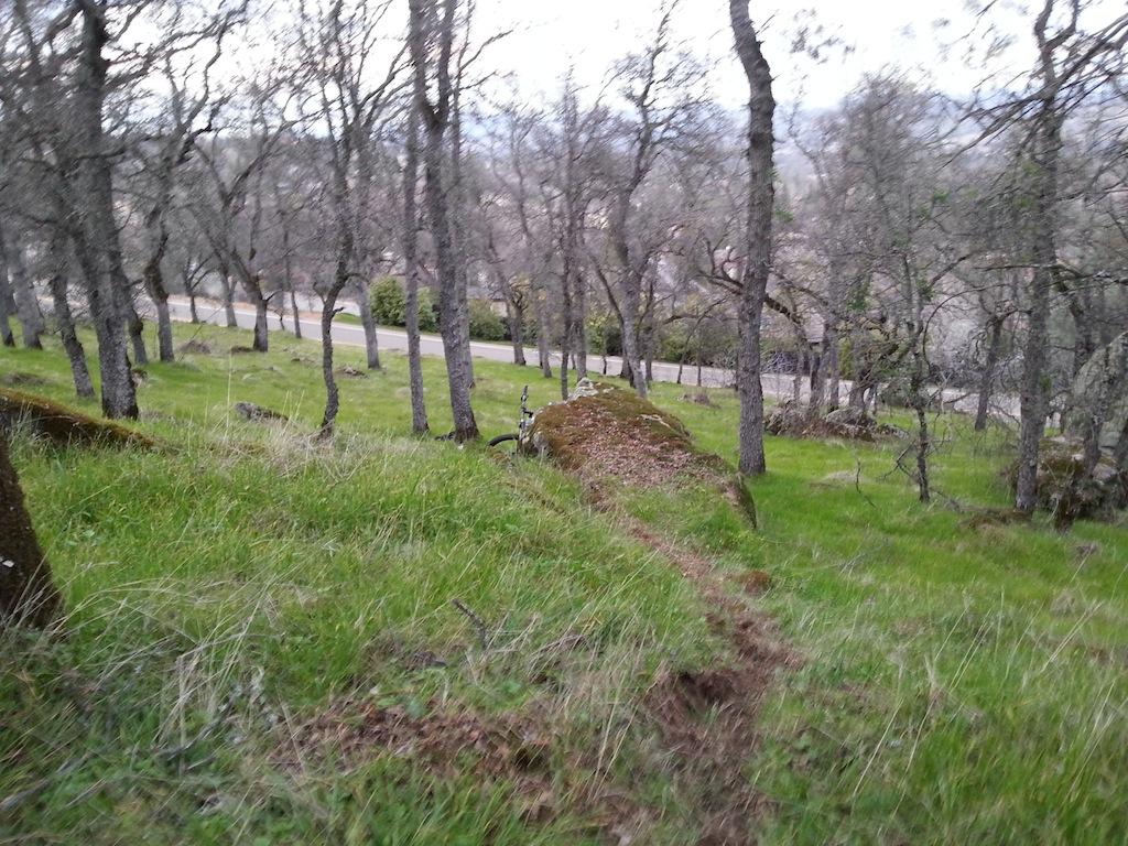 Trail Building in Eldo Hills-20130122_164510.jpg
