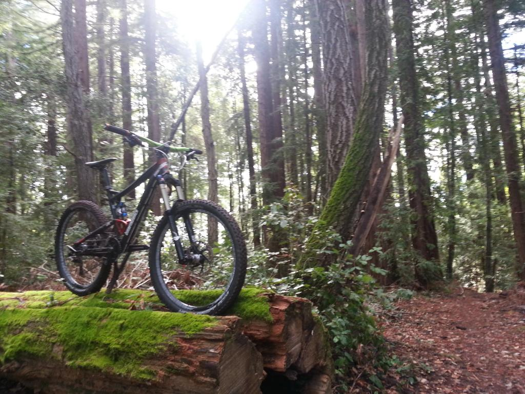 Trail Conditions Report - Week of Jan. 14-20130125_114951.jpg