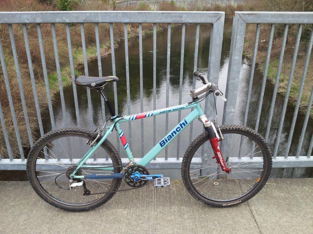 bike +  bridge pics-20130319_145614.jpg
