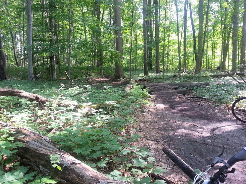 sw michigan trail update-20130616_180924.jpg