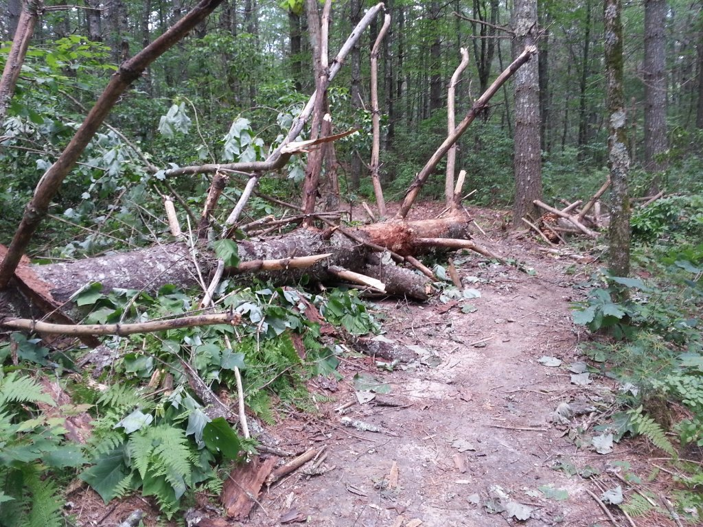 Dupont New Trail - Opening?-20130630_124037smaller.jpg