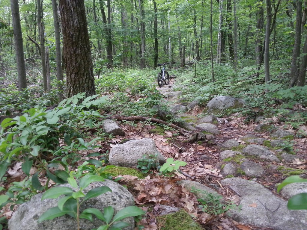 Best trails after rain-20130703_160544.jpg