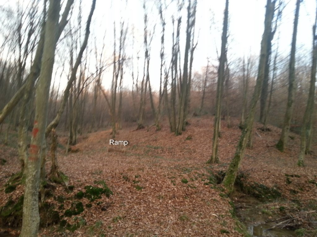 I kneed ideas for my new trail PLEASE help!!!-20131211_154133.jpg