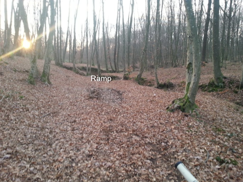 I kneed ideas for my new trail PLEASE help!!!-20131211_154202.jpg