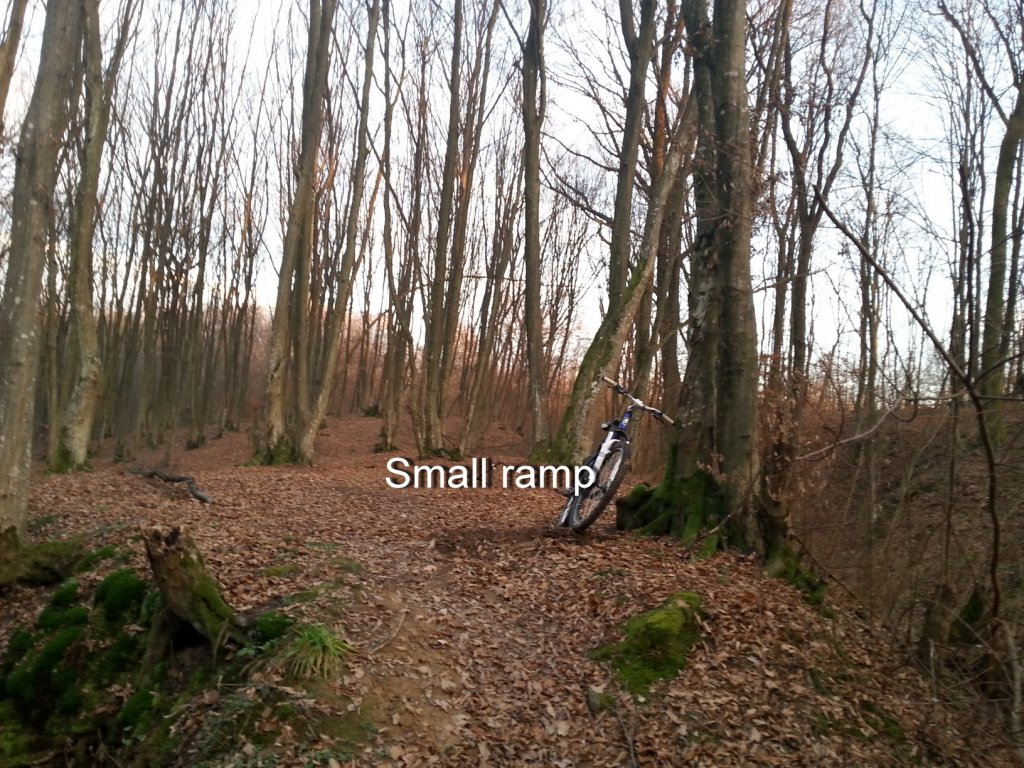 I kneed ideas for my new trail PLEASE help!!!-20131211_154916.jpg