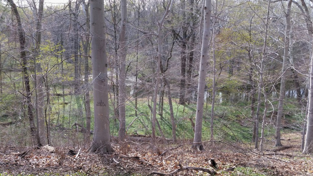 Pennypack Park info/conditons thread-2014-04-19-18.44.00.jpg