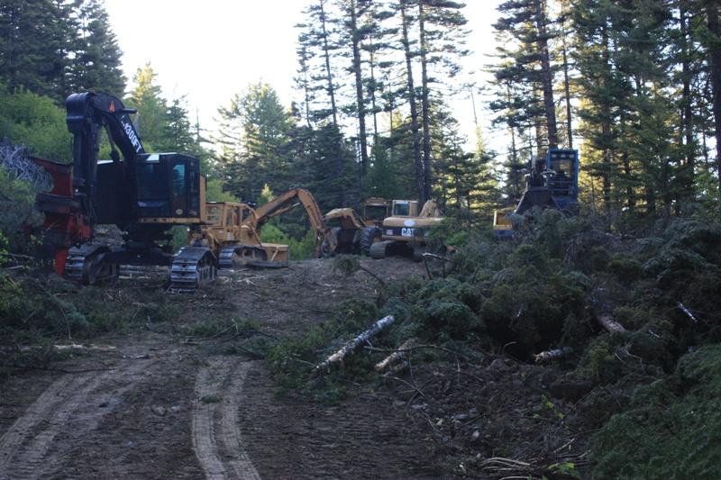 Devils Spur Trail-2014-06-05_3684.jpg
