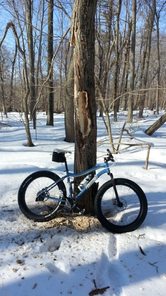 Fatbike trade thread-20140308_151711.jpg