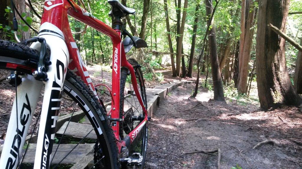 Cross Bikes on Singletrack - Post Your Photos-20140616_132553.jpg