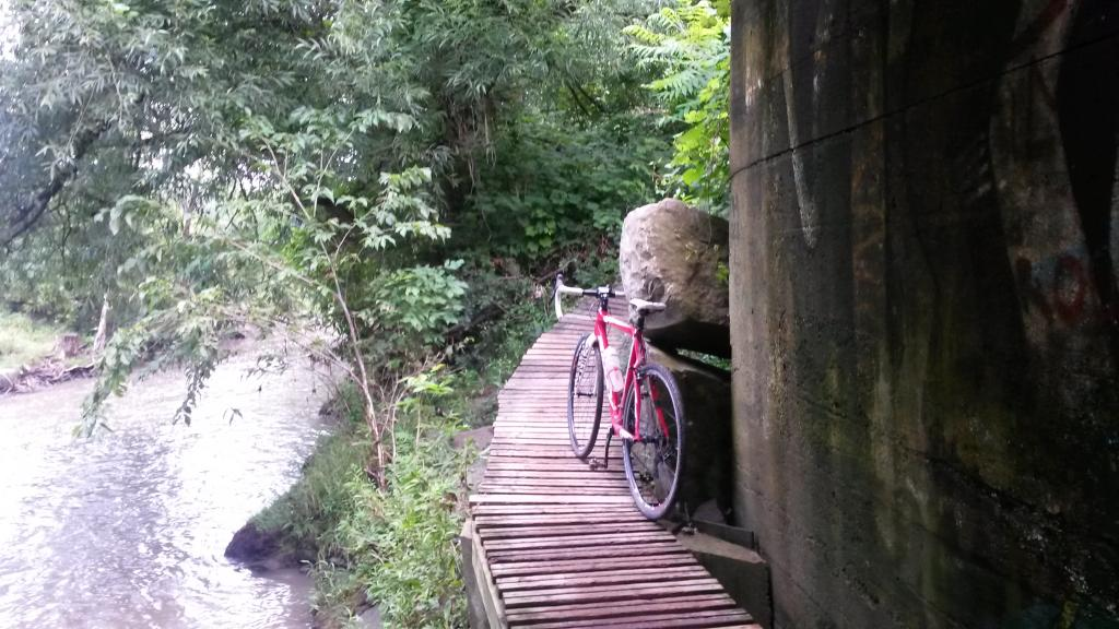 Cross Bikes on Singletrack - Post Your Photos-20140715_122509.jpg