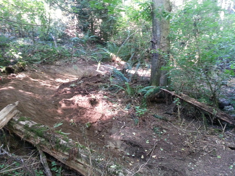 St. Edward State Park - Pipeline Trail Work Parties-20140730_174947.jpg