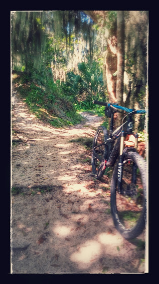 Scott Genius 700 Series Show us your ride-20140819_110805-effects.jpg