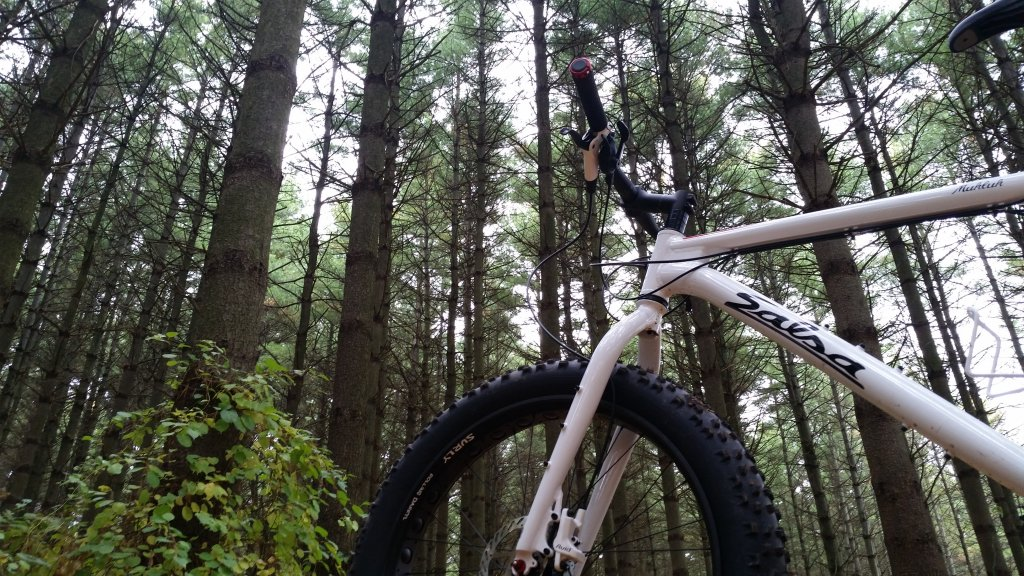 Your Best MTB Pics with the iPhone-20141018_113517.jpg