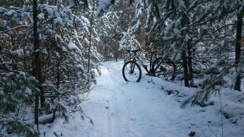 Totally Unofficial Snow Biking 2014/15 Thread-20141118_121506.jpg