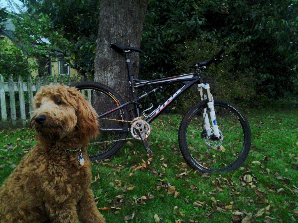 Titus Bike Pr0n-20141120_162747-1-.jpg