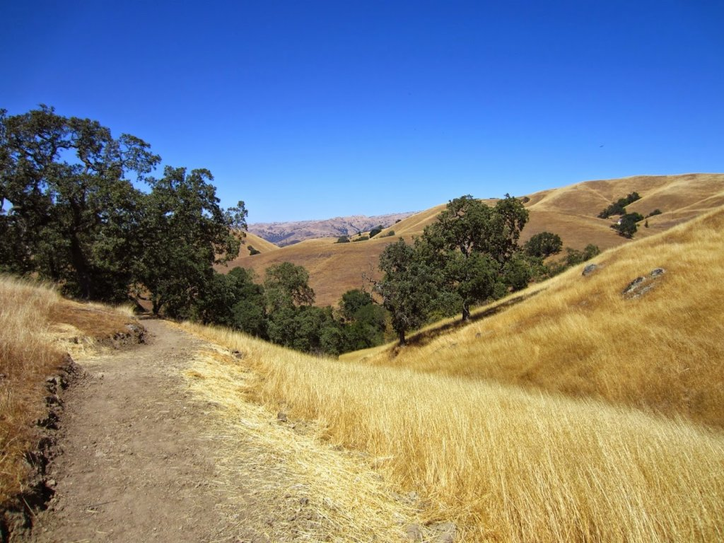 Aquila Loop Trail-2014_08_23_sv_55.jpg