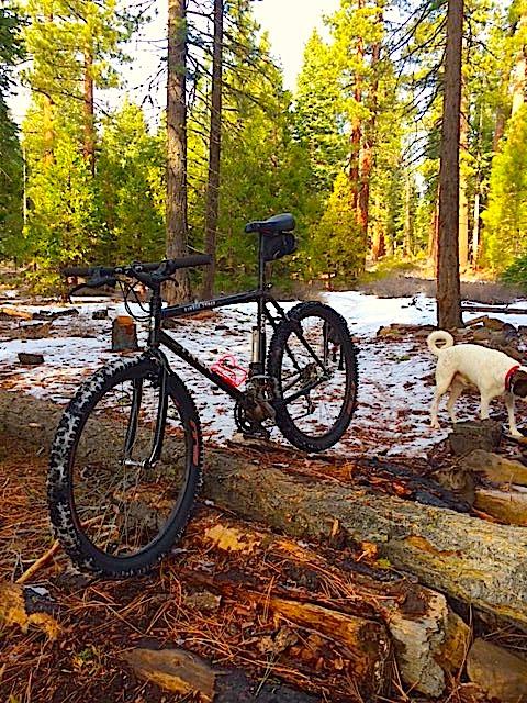 Trail Pics-2015-1st-ride-front.jpeg