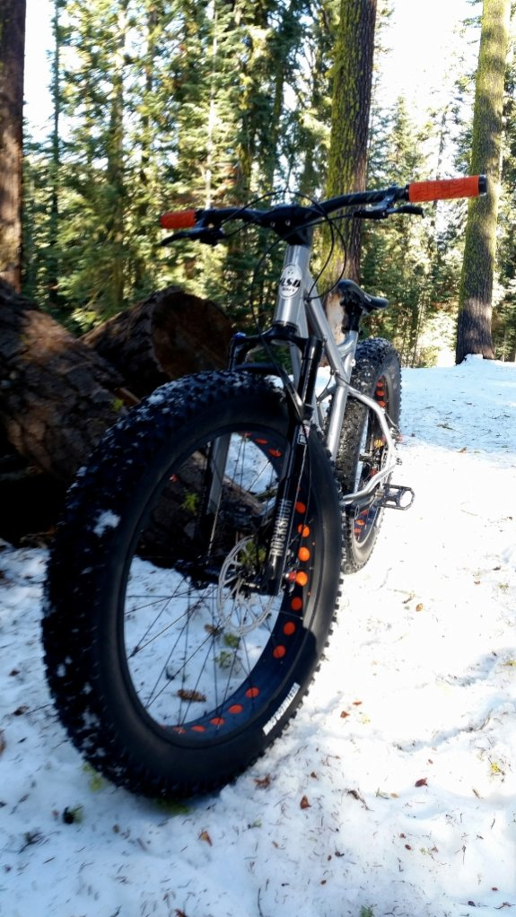 "RSD Bikes ""The Mayor""-20150118_142936.jpg"