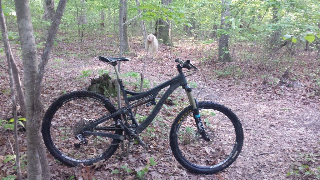 Bike + trail marker pics-20150502_182055.jpg