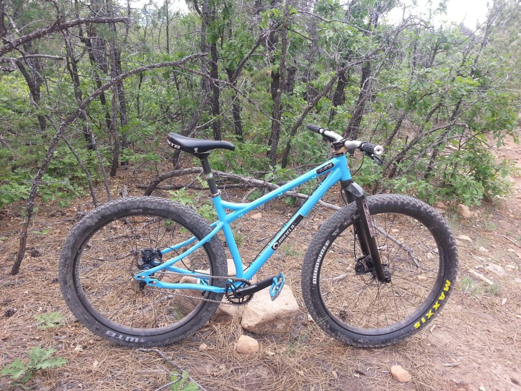 27.5+ WTB Tires and a 2013 Nimble 9= Fun as h_ll!!!!!-20150604_172522_resized.jpg