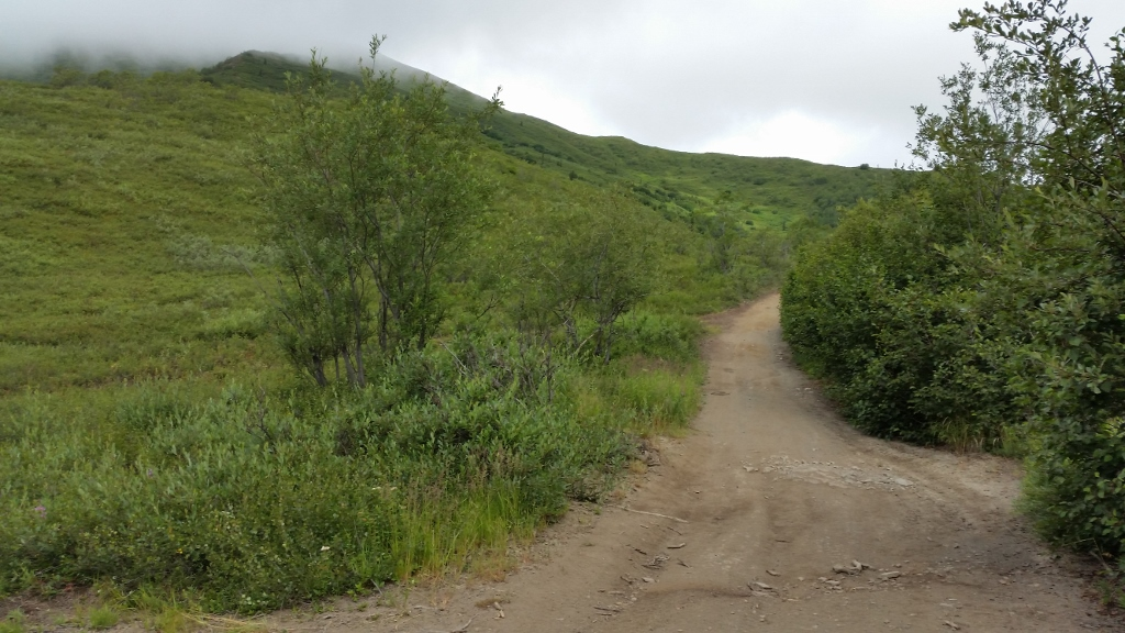 Intro and trail question-20150710_102512-1024x576-.jpg