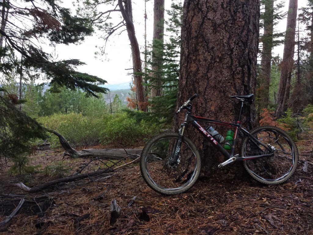 Share your LATEST SS ride...Pics and words-20151018_145315.jpg