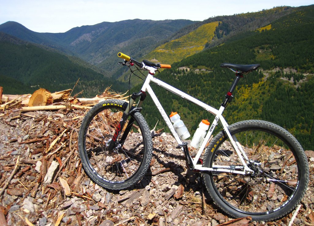 whats your steel 29er set up!-20151025-104939-031.jpg