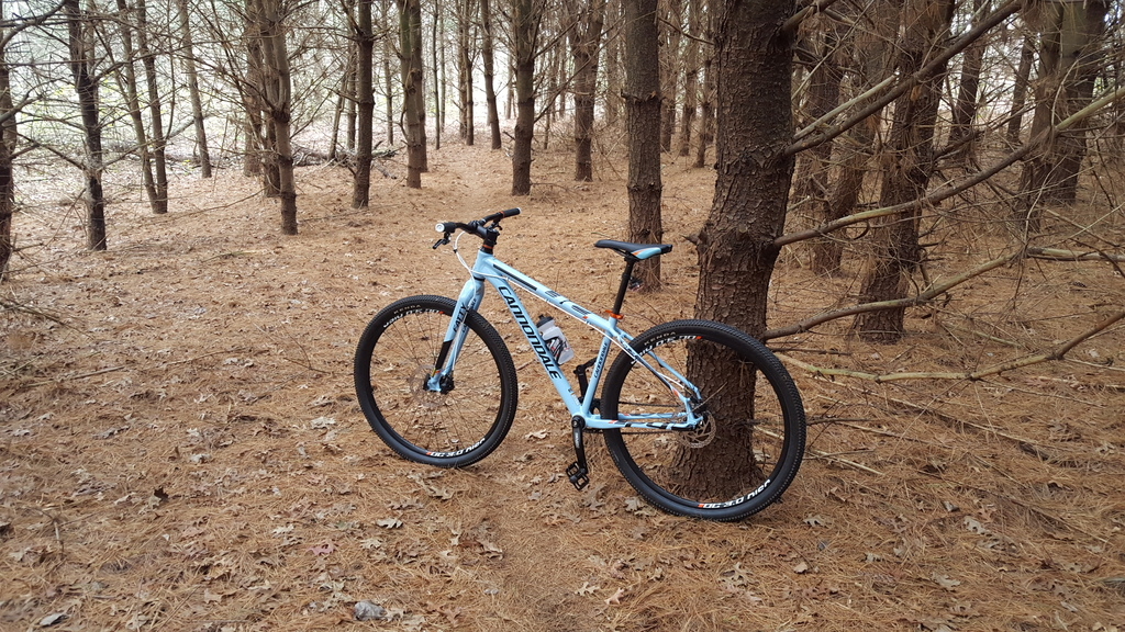 Share your LATEST SS ride...Pics and words-20151111_140037_zpsvo5iftt4.jpg