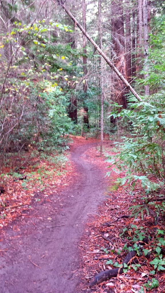 Weekend Ride Report November 25th - 27th-2016-11-25-15.53.24.jpg
