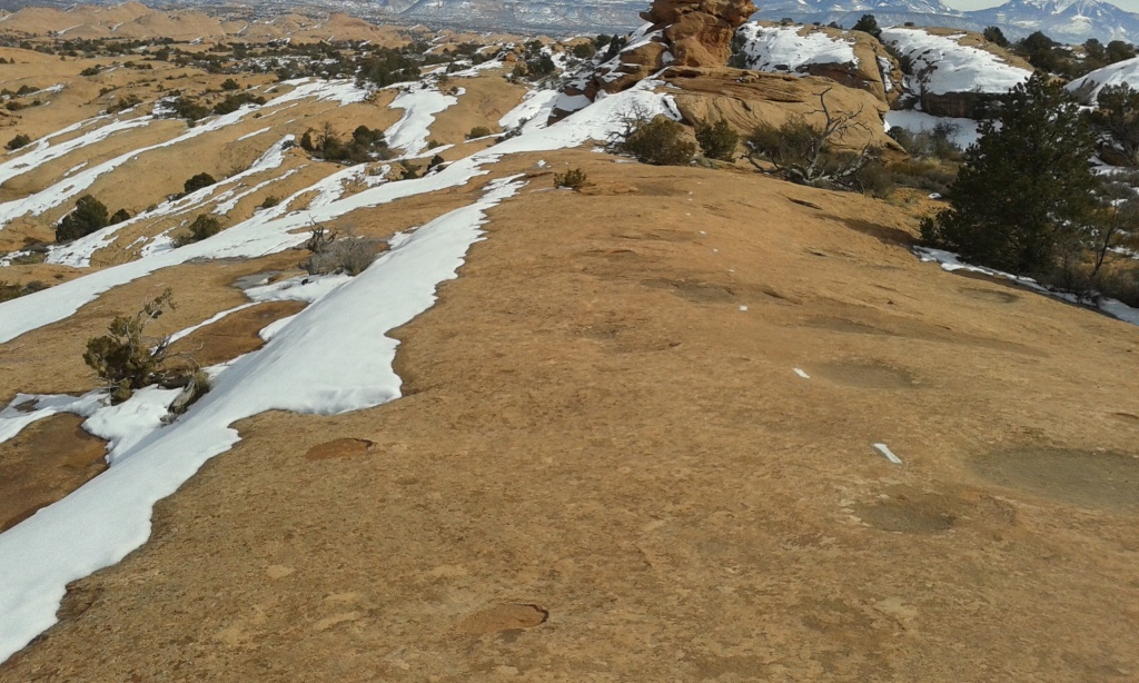 Moab Trail Conditions-20160211_133640.jpg