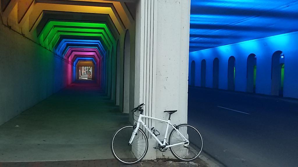 bike +  bridge pics-20160315_065256.jpg
