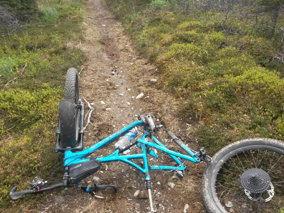 Thinking about a Bucksaw, problems with cracked frames?-20160604_134203.jpg