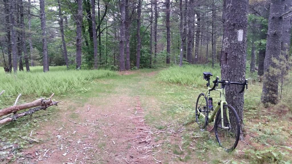 Cross Bikes on Singletrack - Post Your Photos-20160607_073913%5B1%5D.jpg