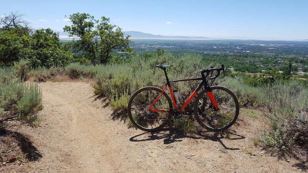 Cross Bikes on Singletrack - Post Your Photos-20160617_151340.jpg