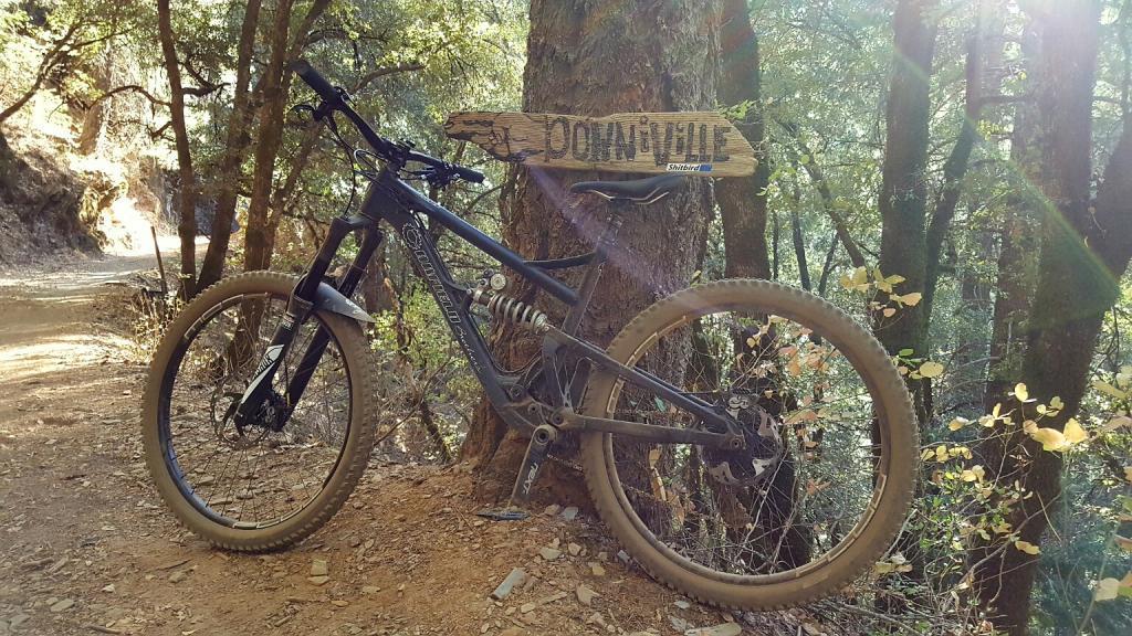 2016 Canfield Balance Trail Photo Thread-20160916_165223_resized.jpg