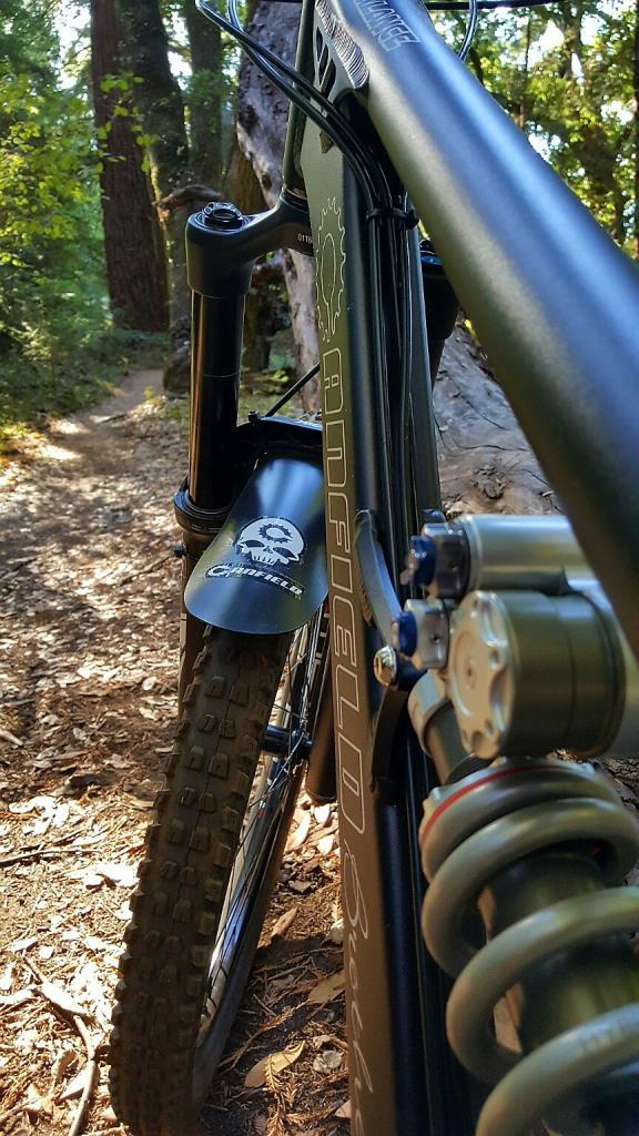 2016 Canfield Balance Trail Photo Thread-20161009_094950_resized.jpg
