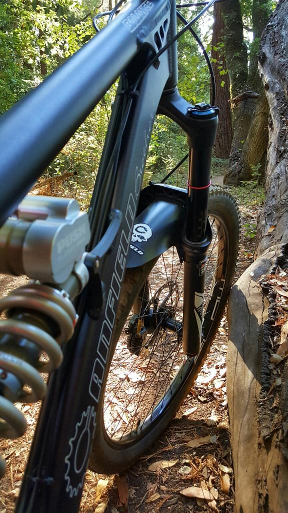 2016 Canfield Balance Trail Photo Thread-20161009_095020_resized.jpg