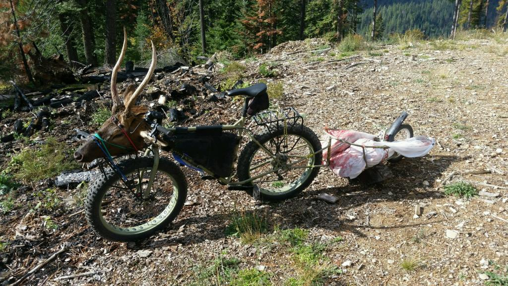 What Can You Carry on Your Bike?-20161011_133551.jpg