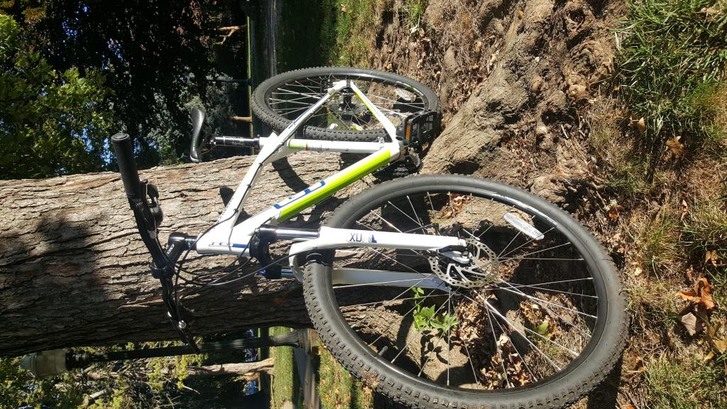Your Entry Level MTB (Pics and Upgrades)-20161023_090457.jpg